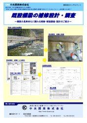 既設橋梁の補修設計・調査